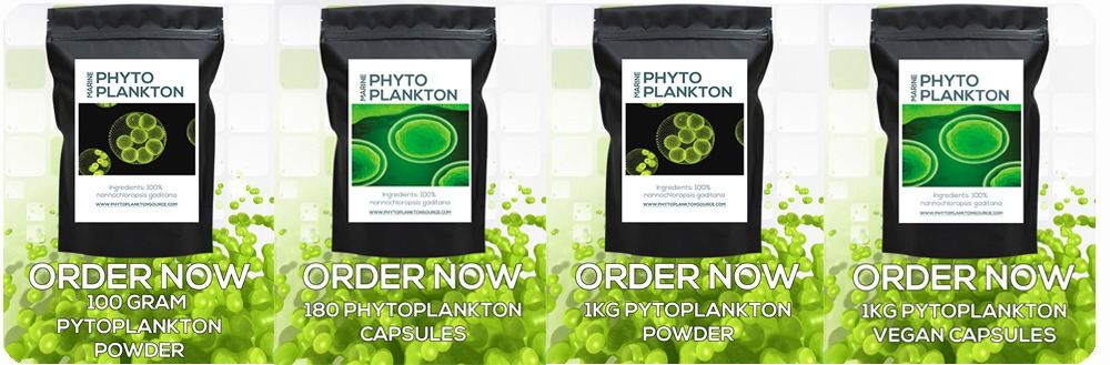 ORDER ALL PHYTOPLANKTON