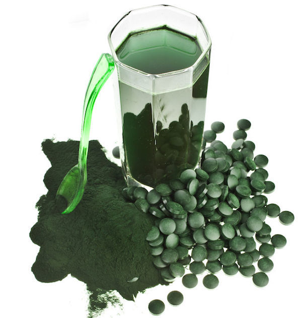 phytoplankton smoothie