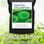 PhytoPlankton Vegan Capsules – 180 x 500mg