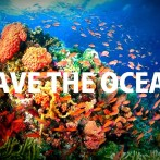 Protect Our Oceans – Eat Algae Not Fish!