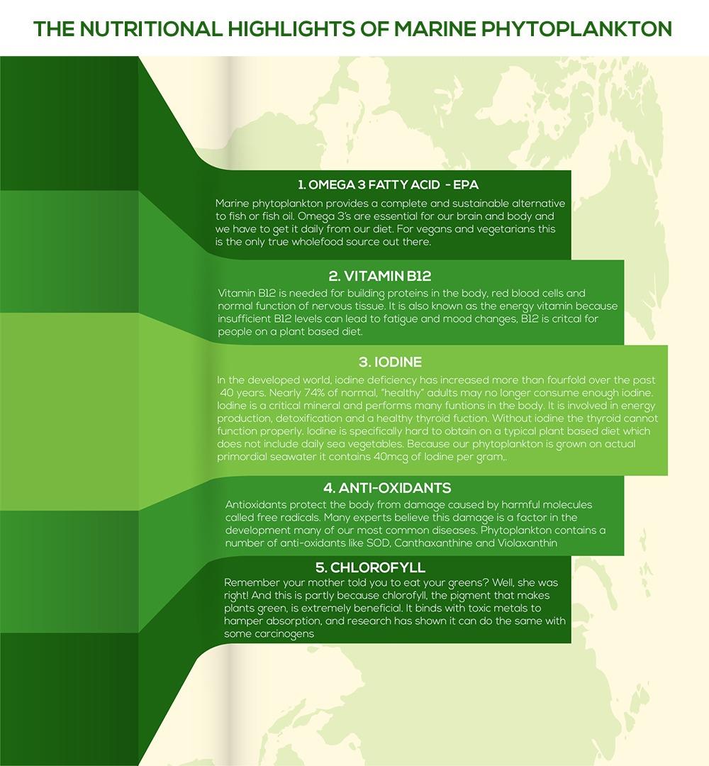 infographic7-3